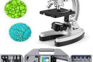 Los mejores microscopios del 2020