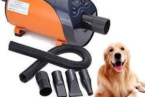 Los mejores secadores de pelo para perros del 2020